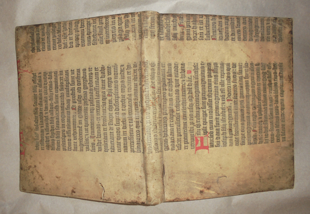 Princeton University Library Acquires a Vellum Fragment of the  Gutenberg Bible Preserved as a Book Cover