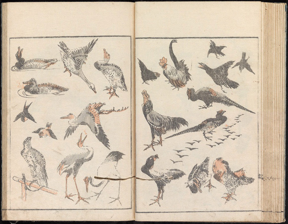 Hokusai A Life in Drawing