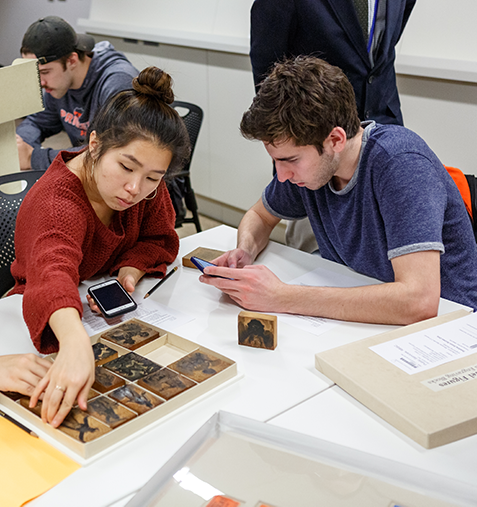 Students examine woodblocks in Special Collections