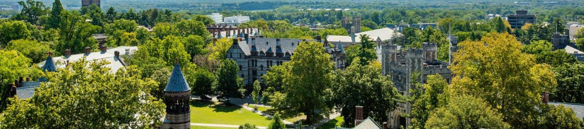 Princeton University Campus green treetops in summer