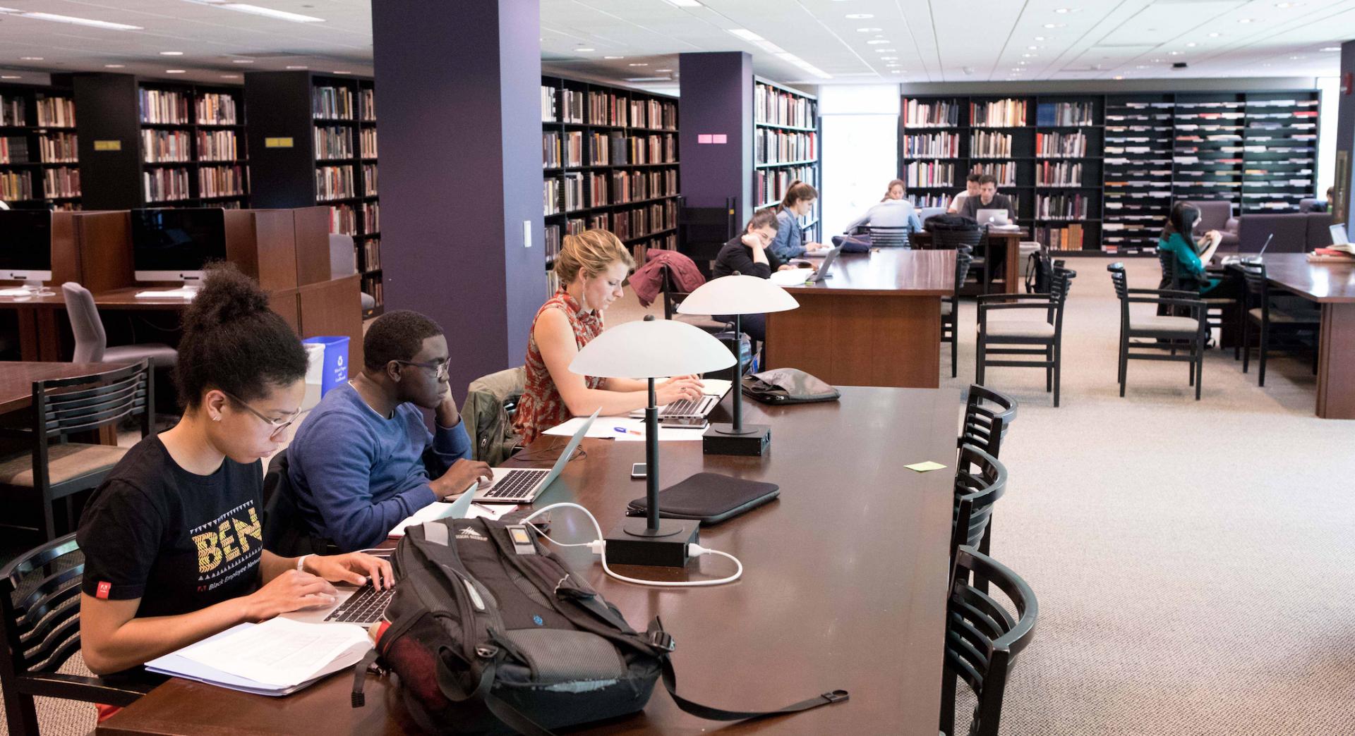 Marquand main study area