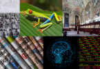 Montage of images representing multiple disciplines