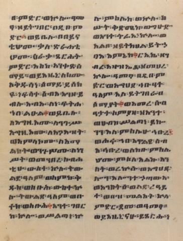 Ethiopic Manuscript Collections