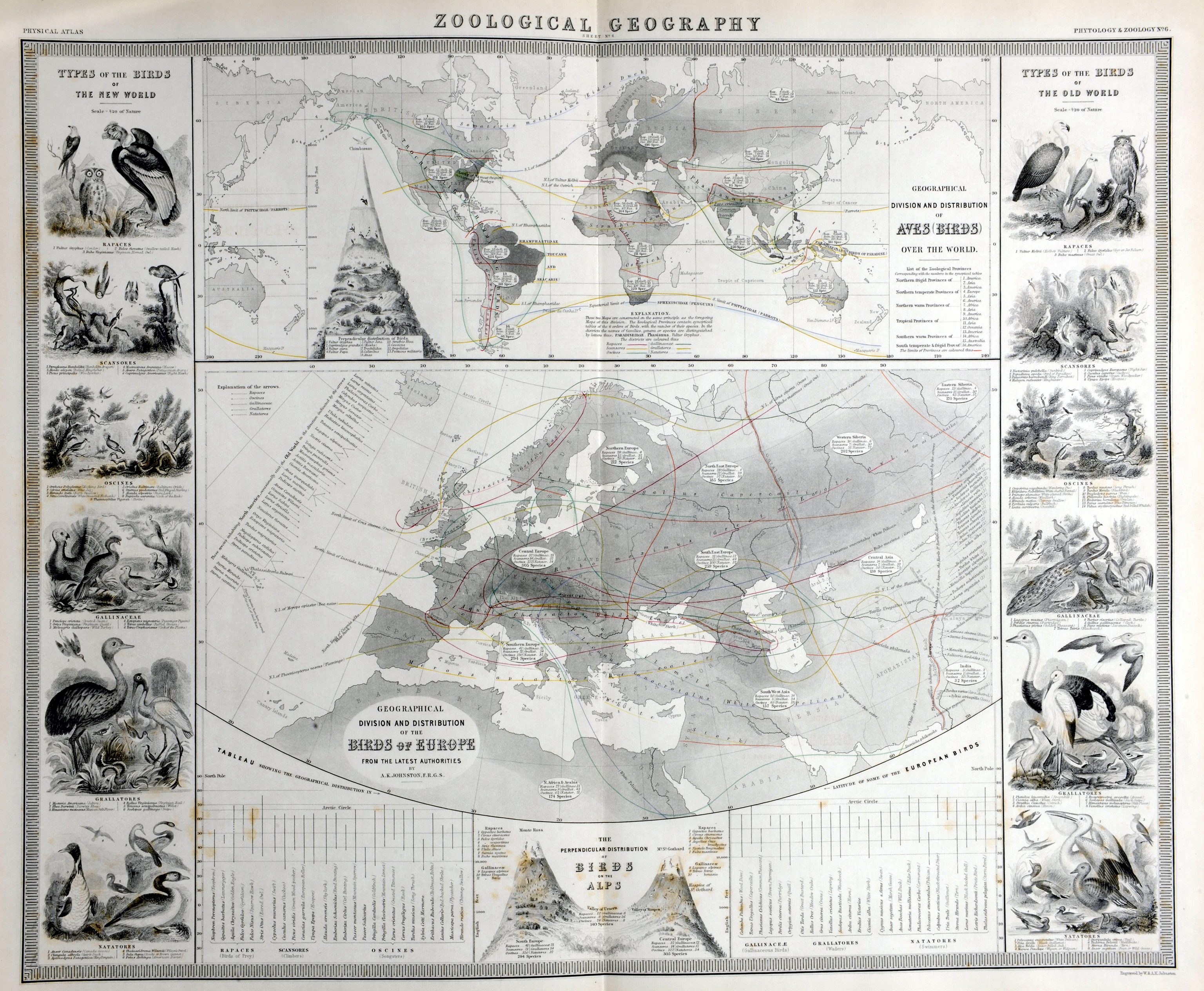 enlarge historic maps collection